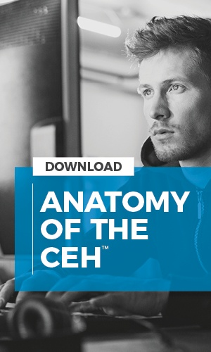 Anatomy_CEH_Download-1
