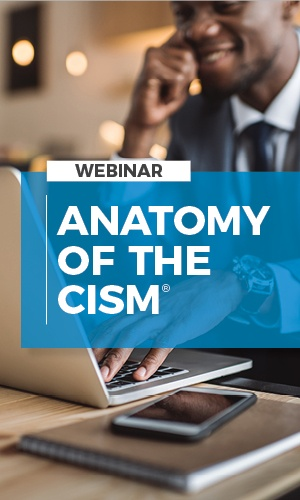 CYBERVISTA: ANATOMY OF THE CISM