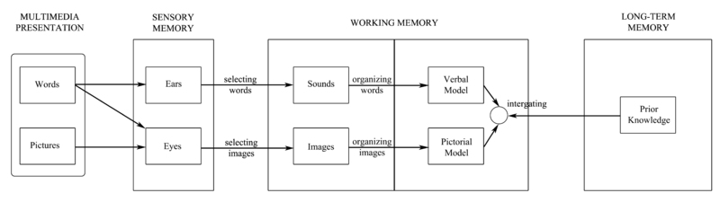 Cognitive_Theory_of_Multimedia_Learning